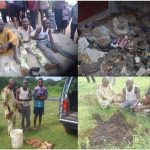 Herbalist Son Exposes His Dad For Killing A Pastor, Who Came To Him for Help