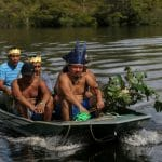 Brazil indigenous tribe fights coronavirus with plants
