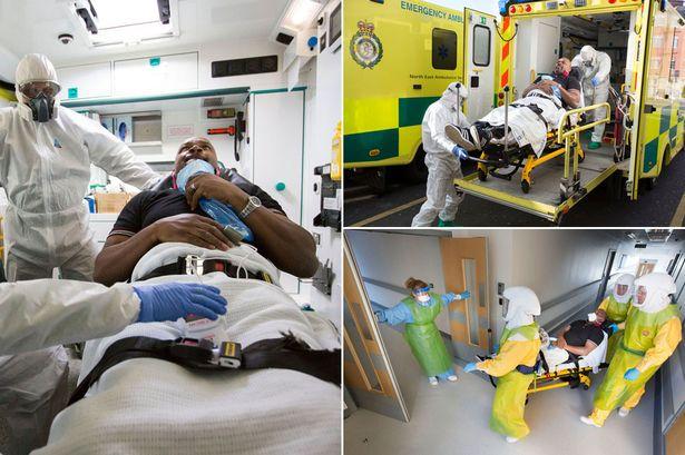 DR Congo announces end of latest Ebola Epidemic