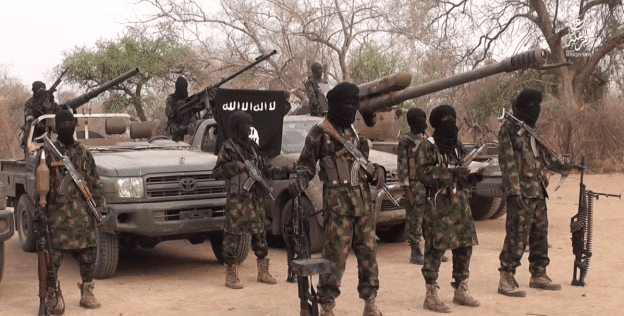 Celebration As Nigerian Army Seizes Boko Haram Leader, Shekau's Farm In Sambisa Forest (Video)